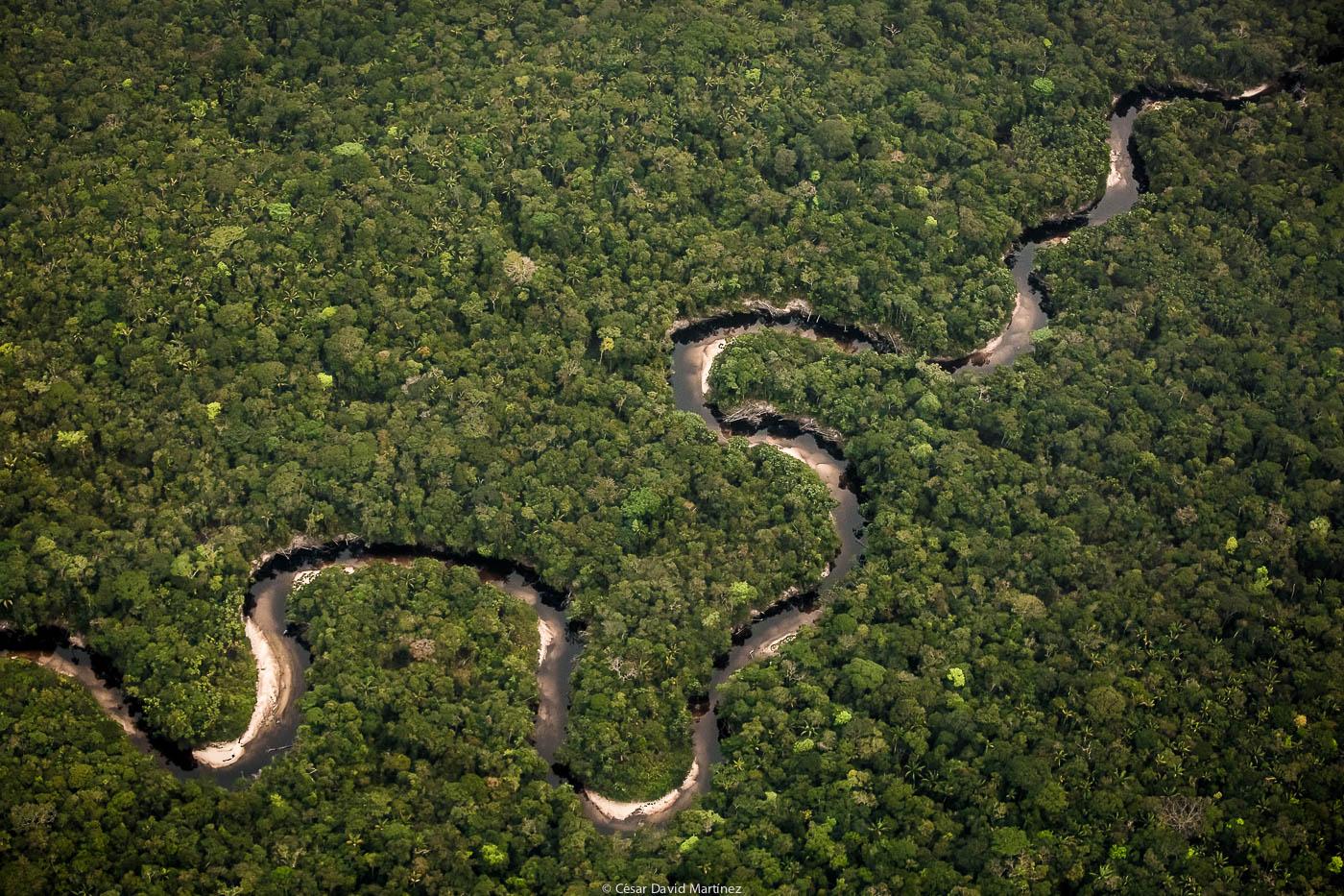 какая река занимает 2 место после амазонки