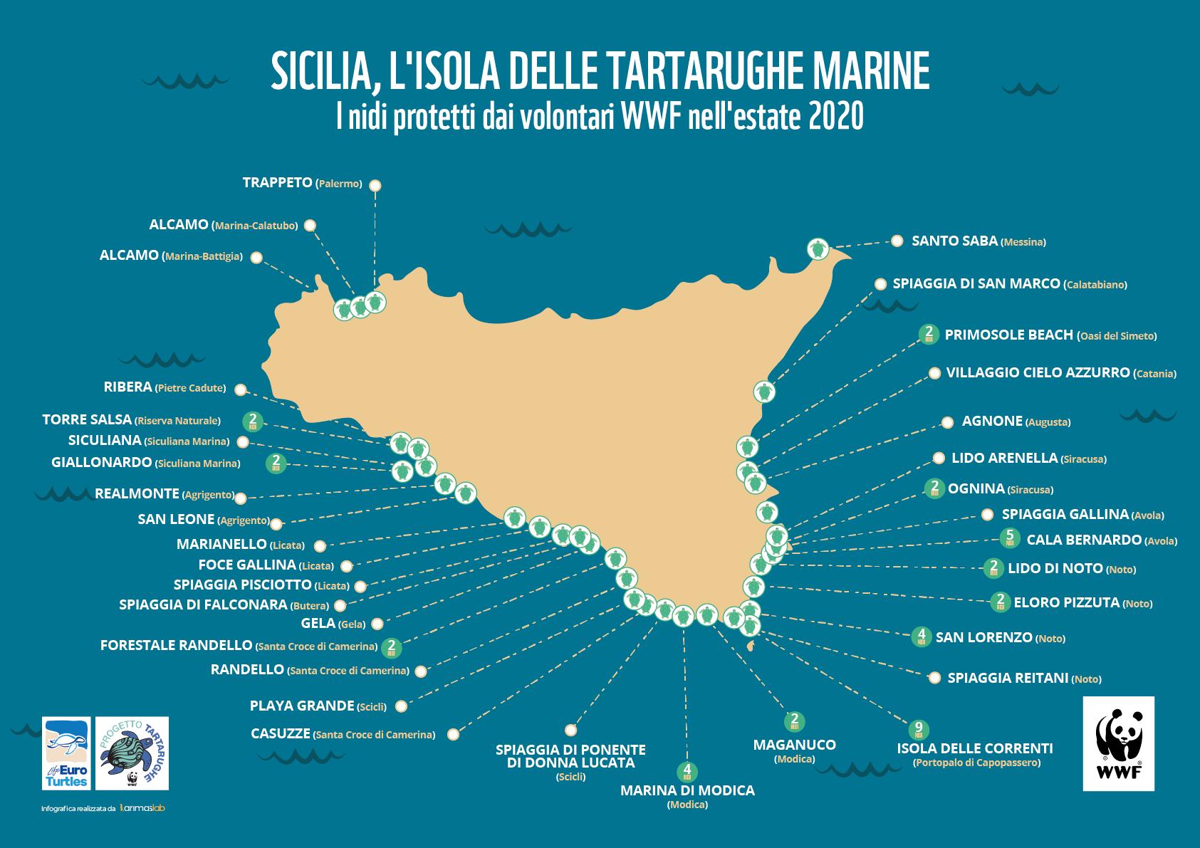 Cartina Noto Sicilia.Piu Di 60 Nidi Di Tartaruga Marina Protetti Dai Volontari Wwf In Sicilia Wwf Italy